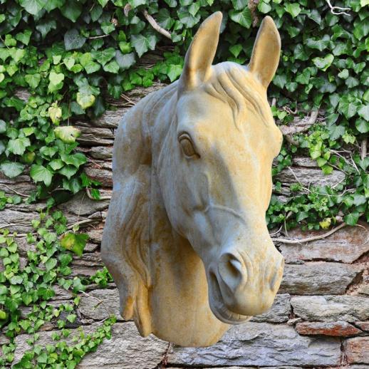 Kunstvoller Pferdkopf aus Stein - Pegasus • Gartentraum.de