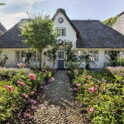 Landhaus mit schmalem Weg und Rosenbüschen © Fotolia.com