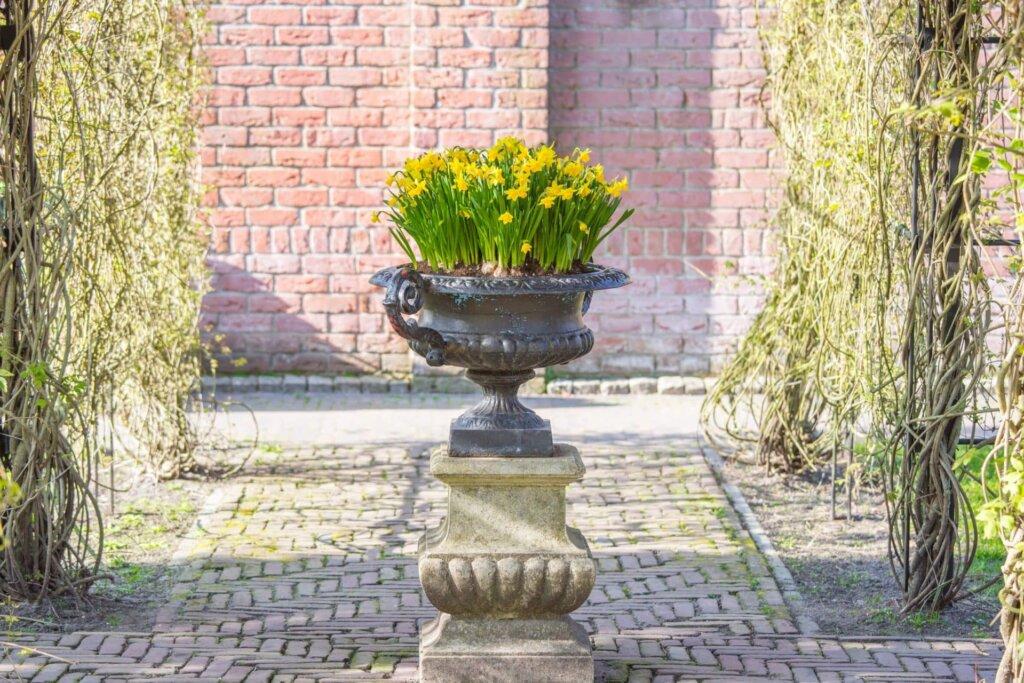 Pflanzkubel Bepflanzen Winterfest Machen Tipps Zu Pflanzgefassen