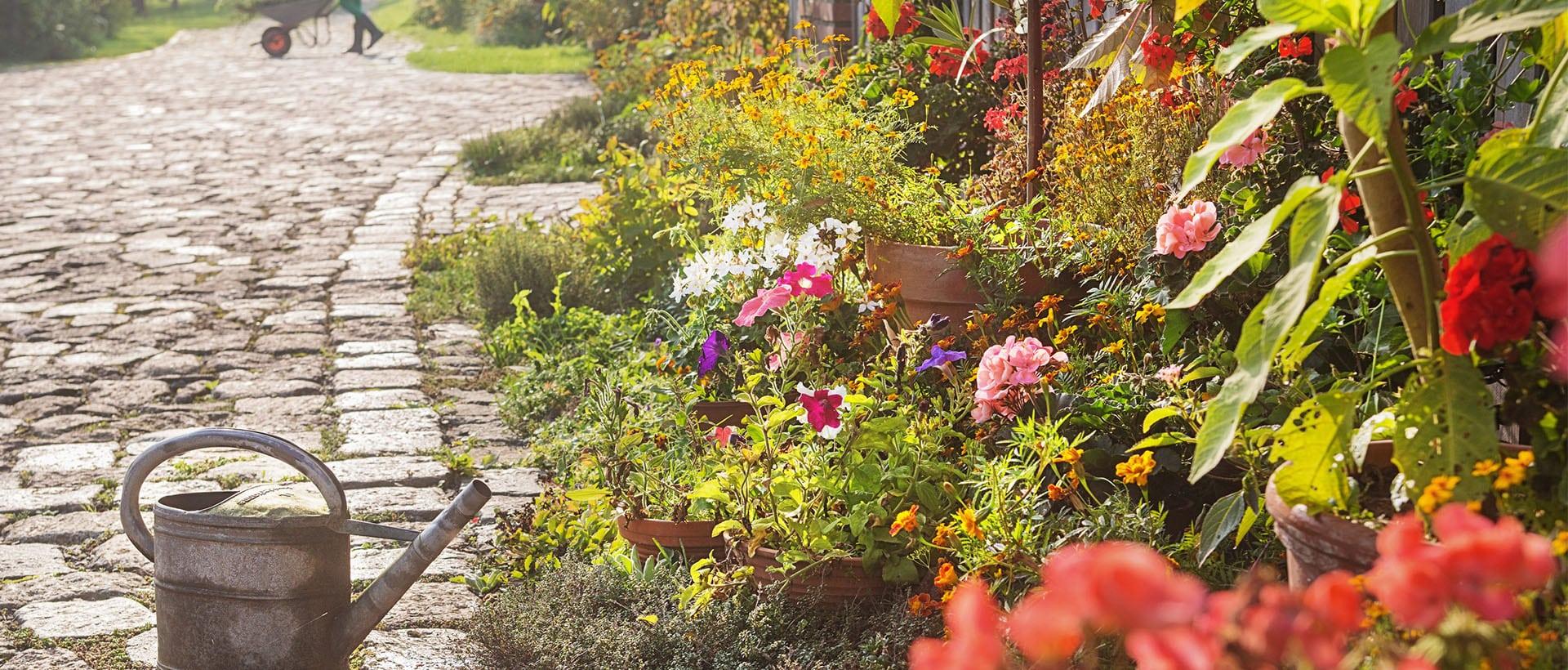 Bauerngarten Cottage Garten Anlegengestalten Tipps Zur Planung
