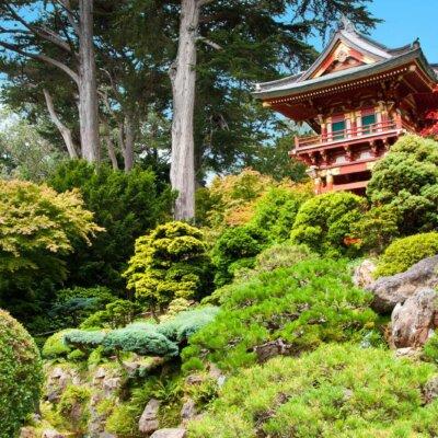 Lexikon: Der Japanische Teegarten