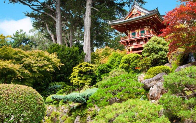 Der Japanische Teegarten – Alles zu Bedeutung & Gestaltung
