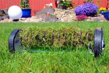 Den Rasen vertikutieren und von Moos befreien