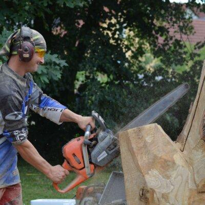 CarvingCup: Kettensaegenkunst in Perfektion