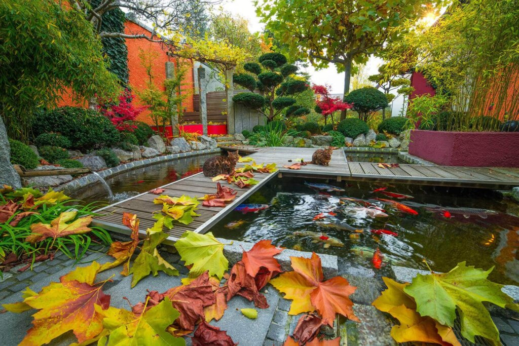 Gartentraum.de Gartenkalender – Oktober 2016