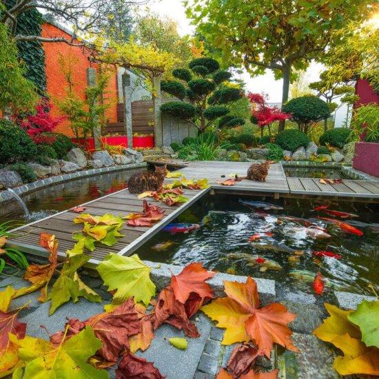 Englischer Garten, Barockgarten & Co. - Gartenstile von ...