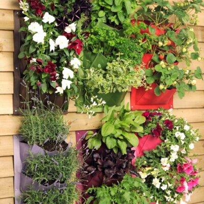 Pflanztasche als vertikaler Garten