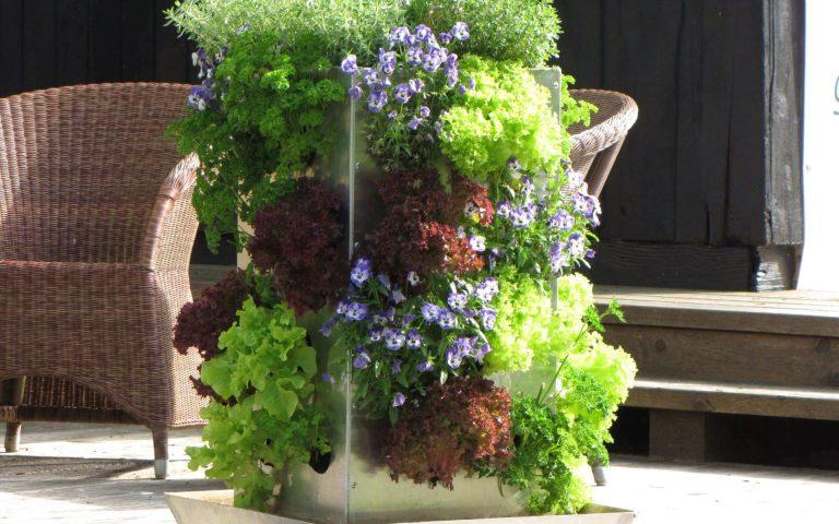 Sehr Vertikaler Garten DIY - Wie Sie ihn aus Paletten einfach selber SQ65