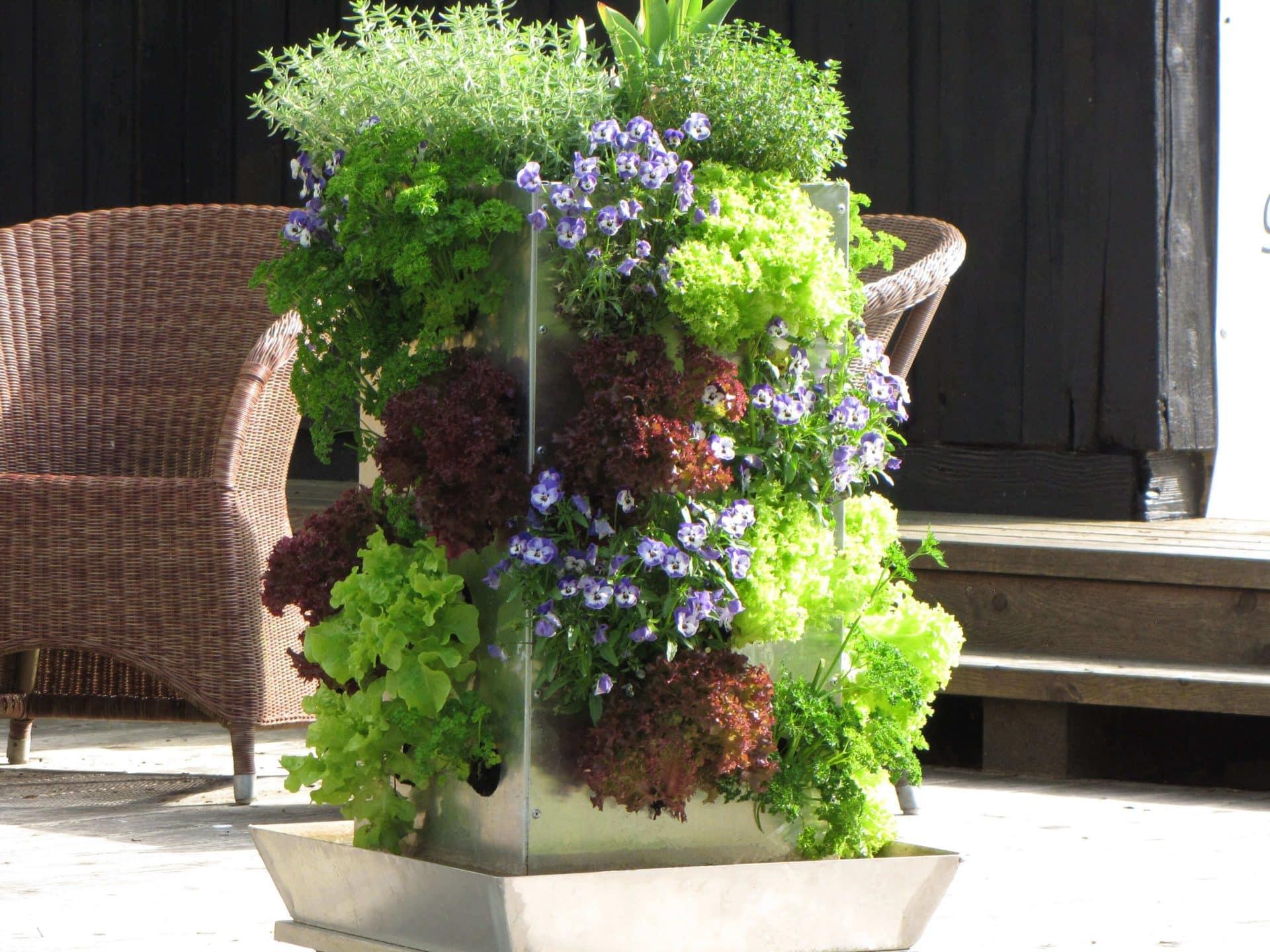 Vertikaler Garten Kaufen : garten pflanzgef e top qualit t kaufen ~ Watch28wear.com Haus und Dekorationen