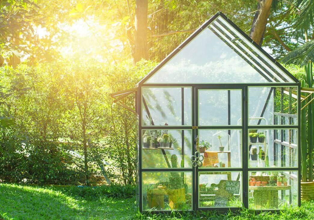 Gewaechshaus-Sonnelicht-Glas