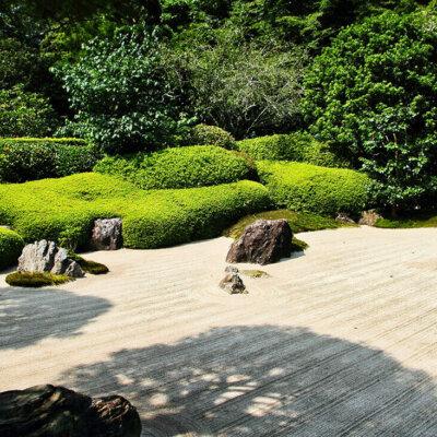 Kiesbett und Gebüsch im Zen Garten