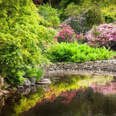Ein kleiner See oder Teich wirkt im Garten harmonisch