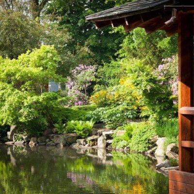 Wasserläufe harmonische kombiniert mit Pflanzen