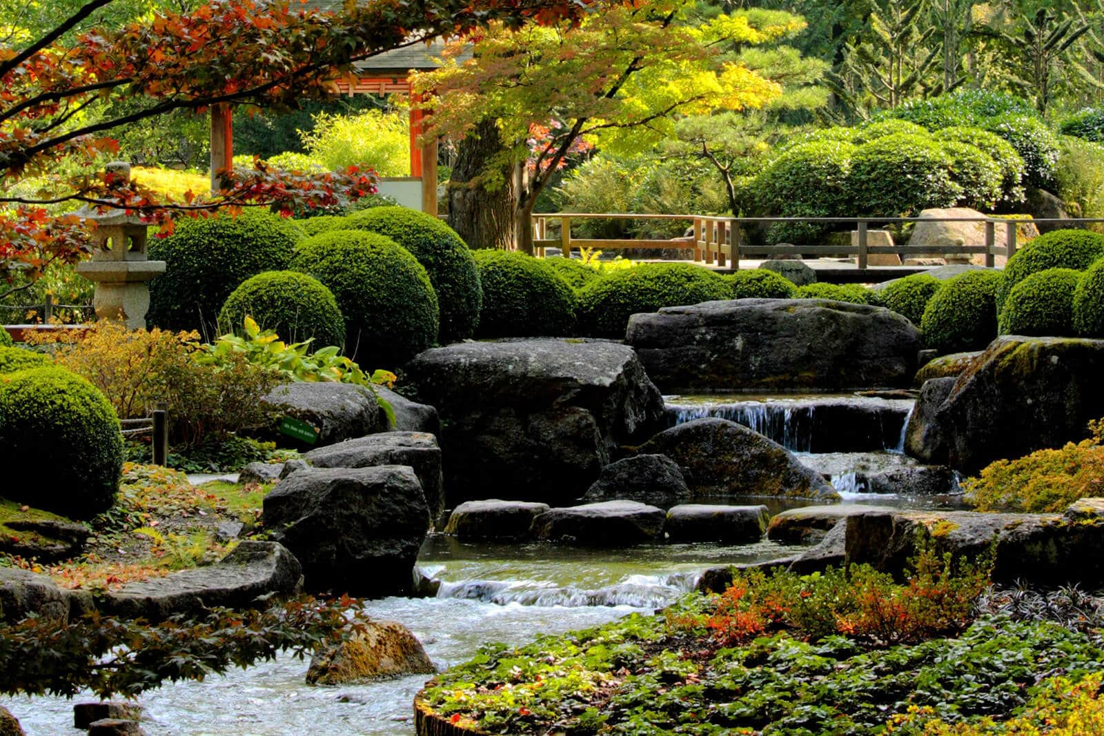 Feng Shui Garten selber gestalten/anlegen - Pflanzen, Beispiele & Bilder