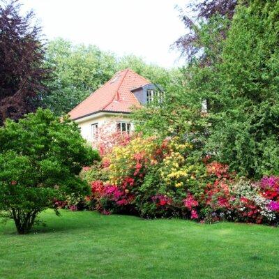Garten im Landhaus-Stil mit wild wachsenden Beeten