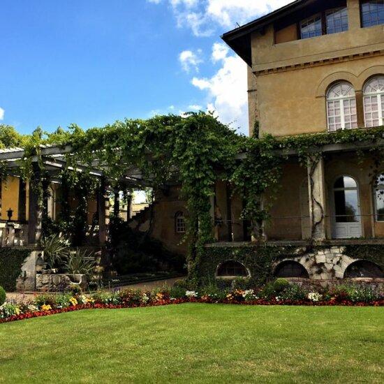 Pflanzenbewachsene Pergola als Sonnenschutz