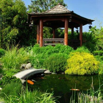 Japanischer Gartenpavillon