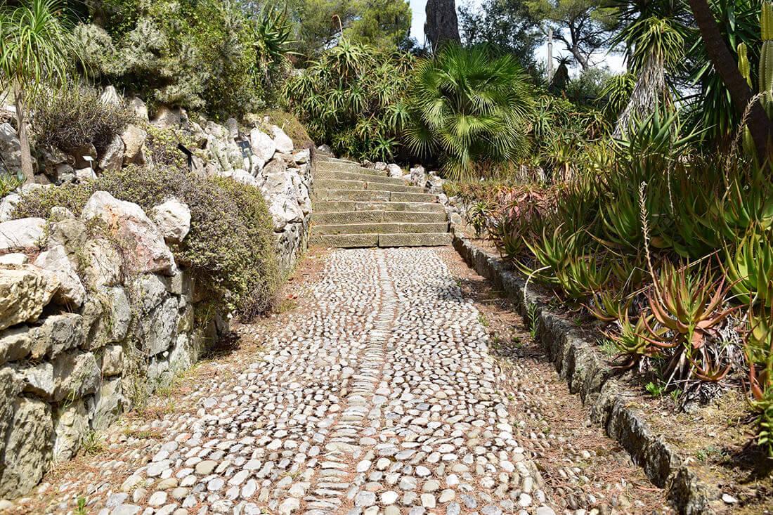 Mediterranes Flair passt besonders gut in einen Steingarten.