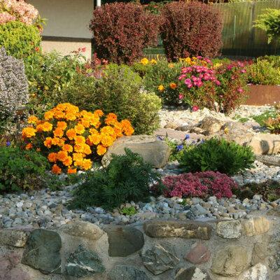 Steingarten mit vielen bunt blühenden Blumen © vulkanismus - Fotolia.com