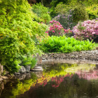Kleiner See in farbenfrohem Garten