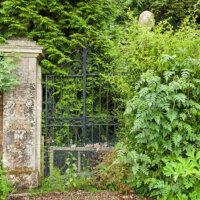 Altes Tor in einer Steinmauer