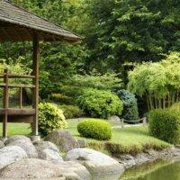 Asiatischer Garten mit exotischen Pflanzen