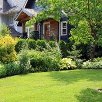 Abgrenzung mit Grünpflanzen