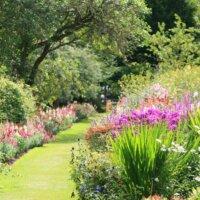 Blühende Blumenbeete in großem Garten