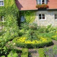 Gelbe Bepflanzung vor Steinhaus