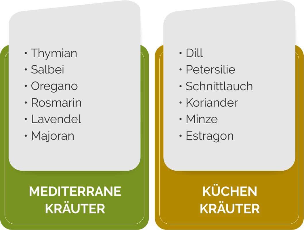 Anordnung von Küchenkräutern im Überblick