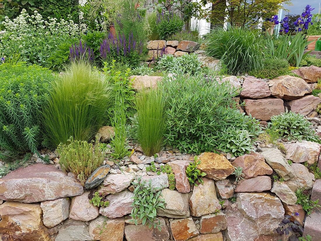Trockenmauer im Steingarten