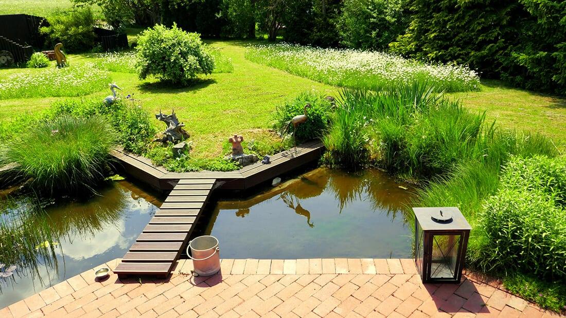 Gartenteich mit Schilf und Terrasse