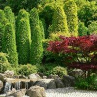 Immergrüne Pflanzen in Kombination mit einem kleinen Wasserfall und Natursteinen