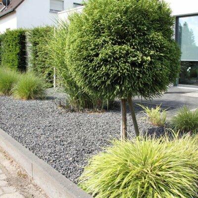 Moderner Sichtschutz im Vorgarten
