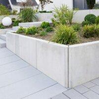 Moderne Gartengestaltung mit immergrünen Pflanzen