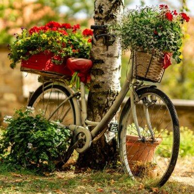 Ein altes Fahrrad dient als Dekoelement im Garten