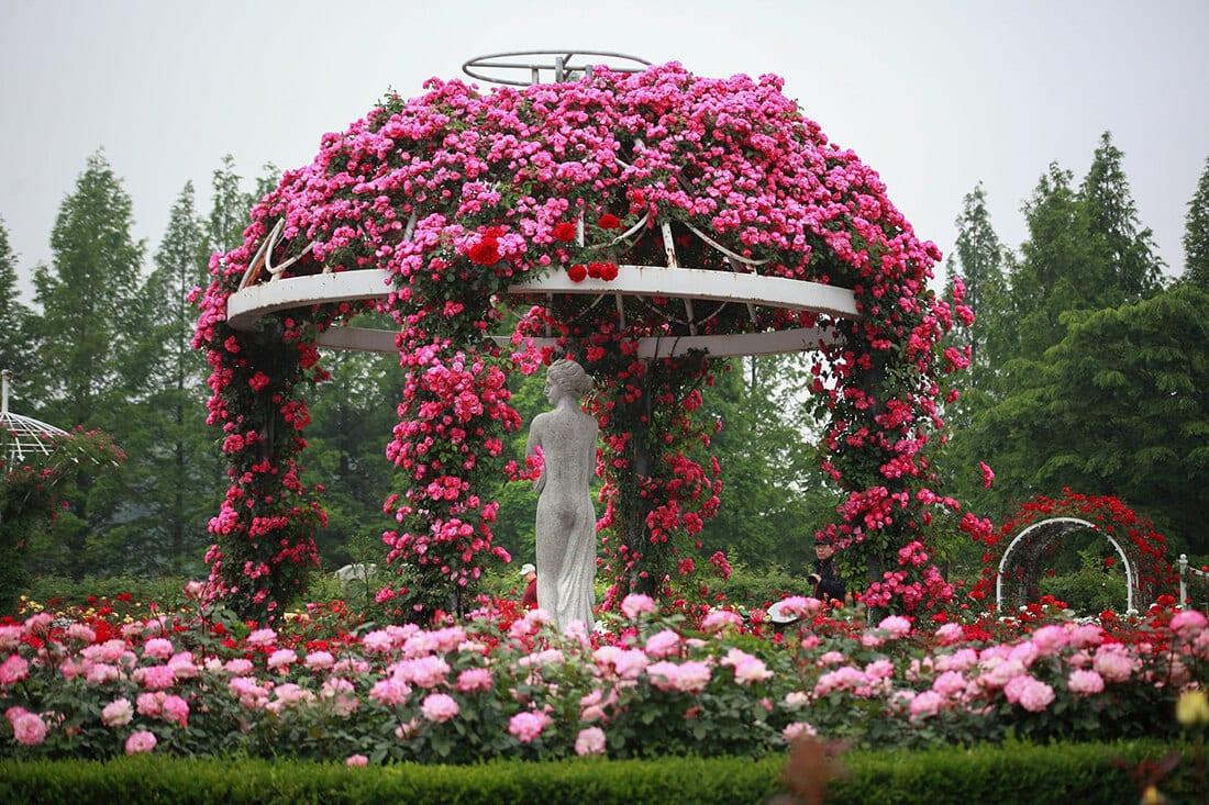 Kunstvolles Blumenarragement