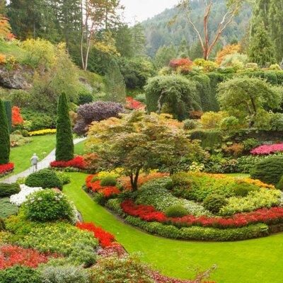 Sauber abgegrenzte Blumen- & Pflanzenbeete © Depositphotos_23564181_l-2015