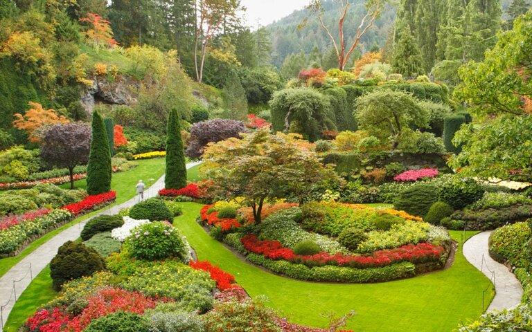 Garten gestalten oder neu anlegen
