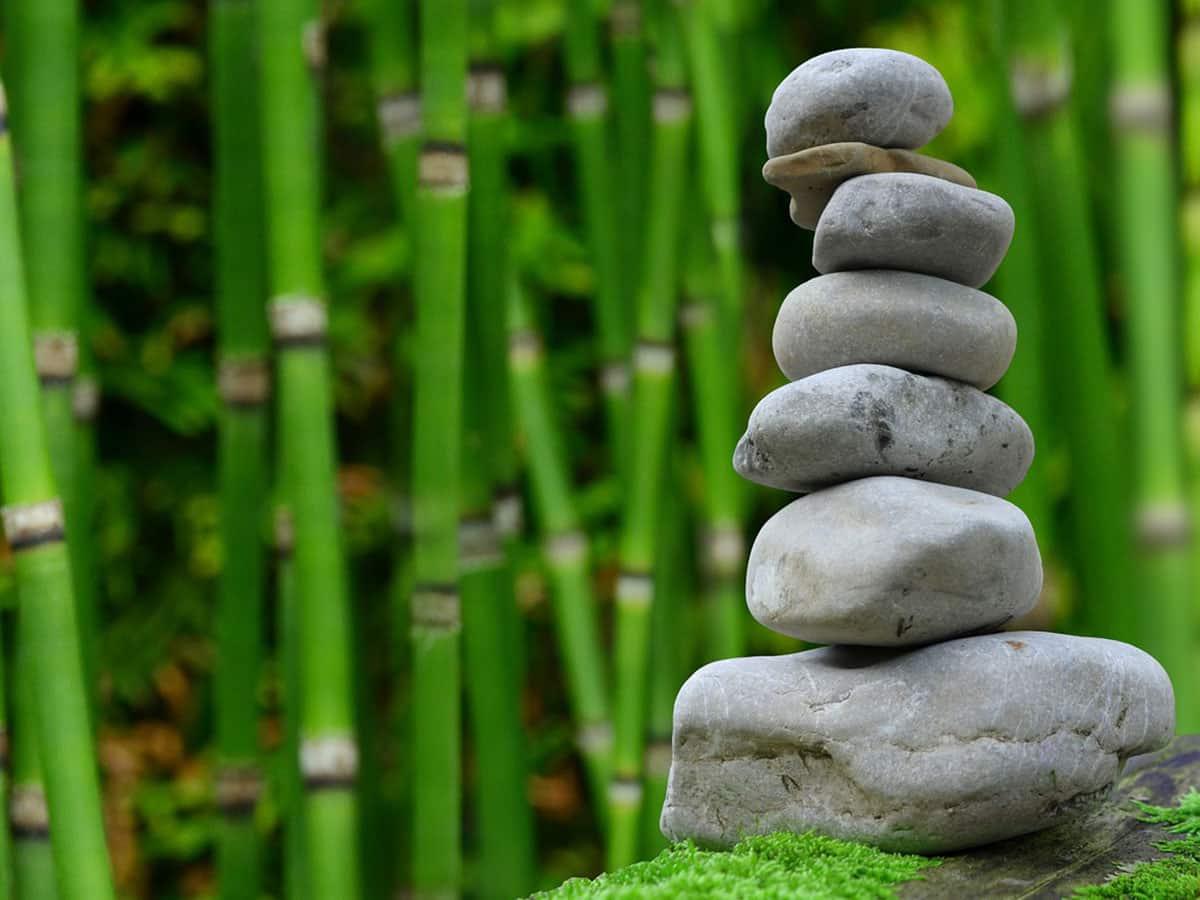 Japanischen Garten Anlegen 10 Ideen Mit Bildern Pflanzen Deko