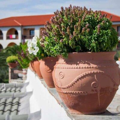 Pflanzgefäß für die mediterrane Terrassengestaltung