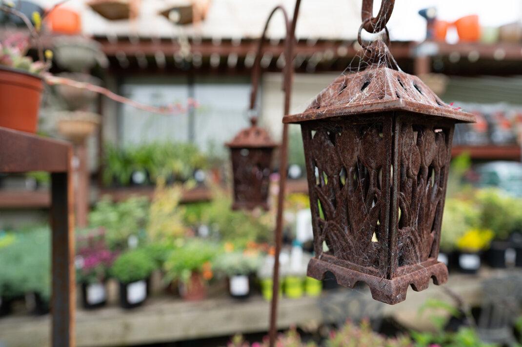 Eine rostige Gartenlaterne als attraktiver Blickfang für den Garten