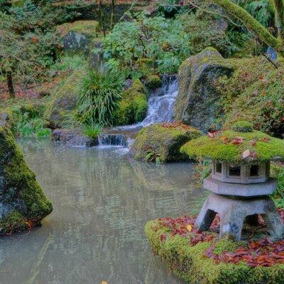 Wilder japanischer Wasserfall