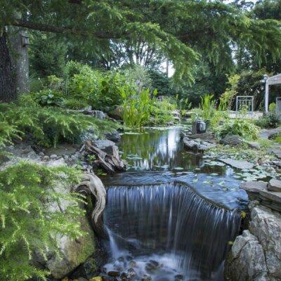 Wasserfall im Grünen mit Steinen