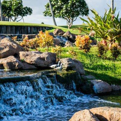 Wasserfall in exotischem Garten