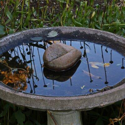 Vogelbad aus Stein in schlichtem Design
