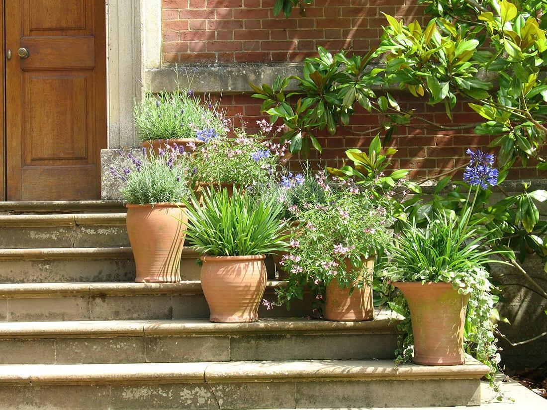 Bepflanzte Gefäße am Hauseingang