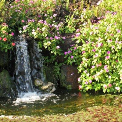 Kleiner Wasserfall umbringt von Blumen