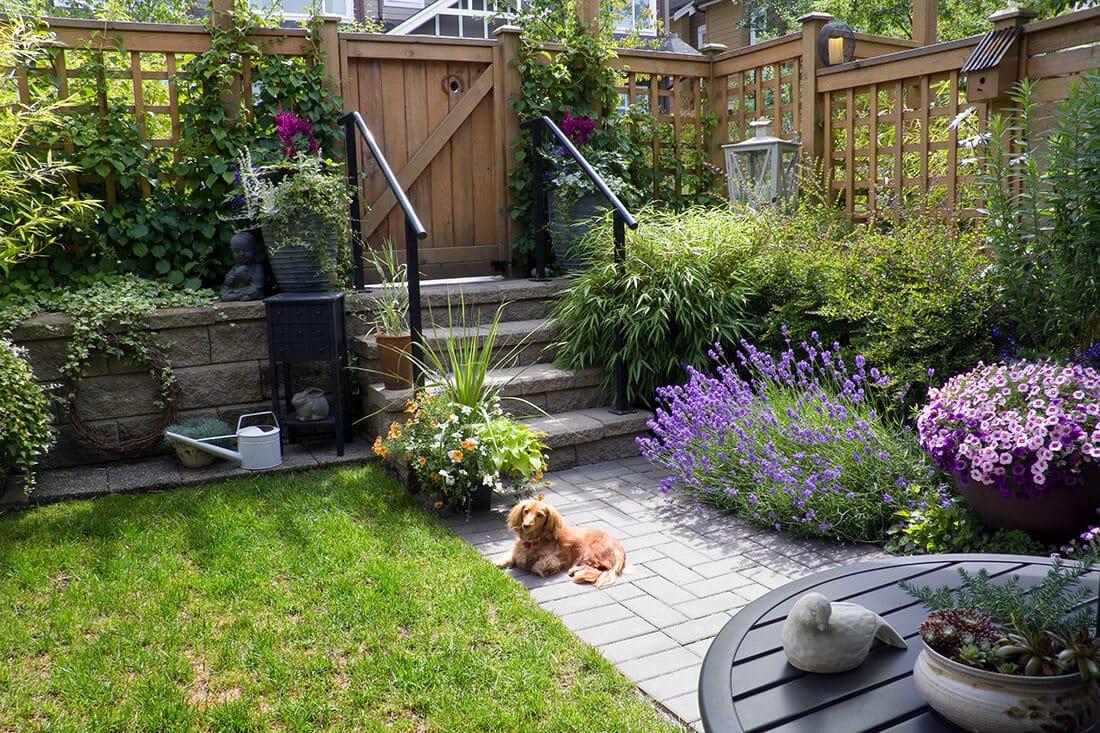 Kleiner Garten detailliert dekoriert