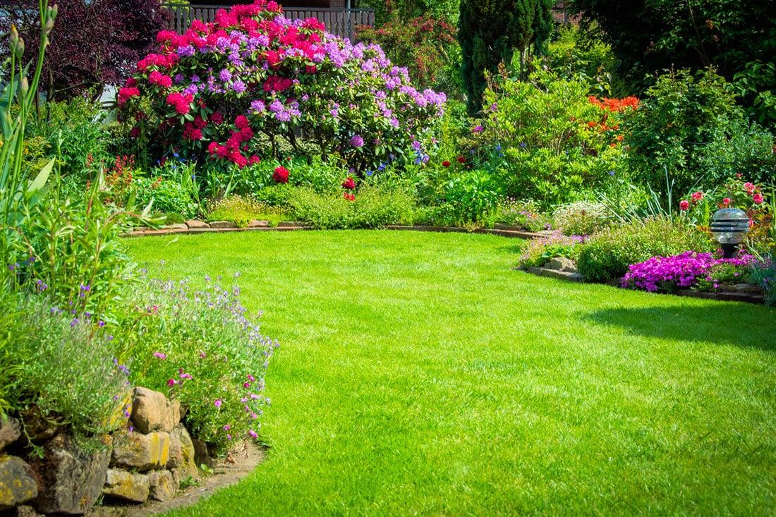 Gepflegter Rasen im Sommer